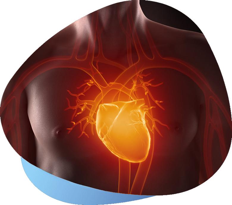 cardiologia-quando-ne-abbiamo-bisogno